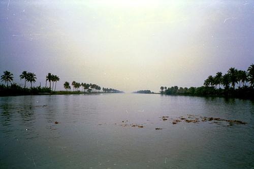 cocunut-lagoon.jpg