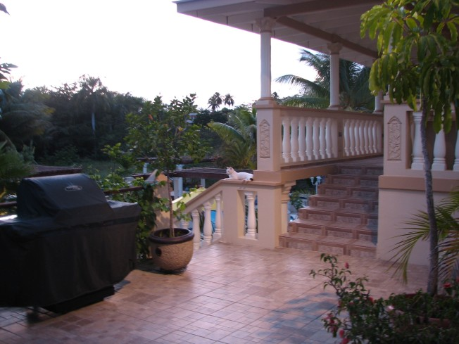 rincon-cat-terrace